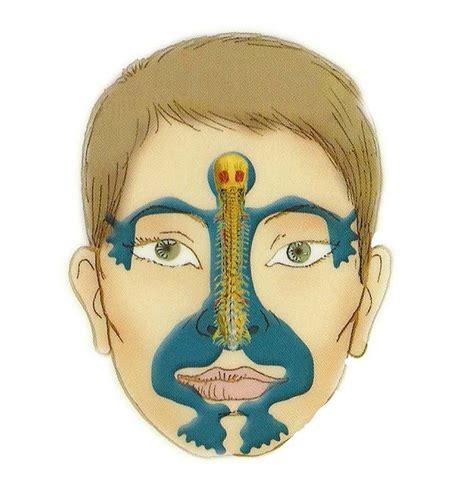 Master Tung Detox by Mejores 43 Im 225 Genes De Master Tung S Acupuncture En