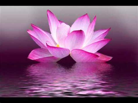 healing    body soul relaxing