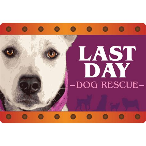 last day rescue last day rescue