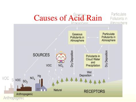 Ppt Acid Rain And Photochemical Smog Powerpoint Ppt Of Acid
