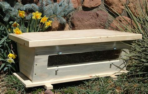 beekeeping top bar 1000 ideas about bee hives for sale on pinterest bee