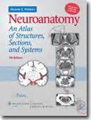neuroanatomy an atlas of structures sections and systems neuroanatomy an atlas of structures sections and