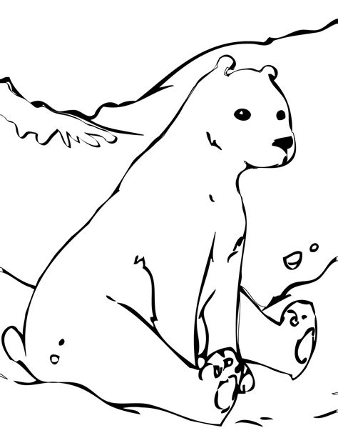 free coloring pages of arctic animals