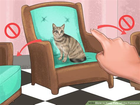 how to keep cats off the couch how to keep cat hair off furniture best furniture 2017