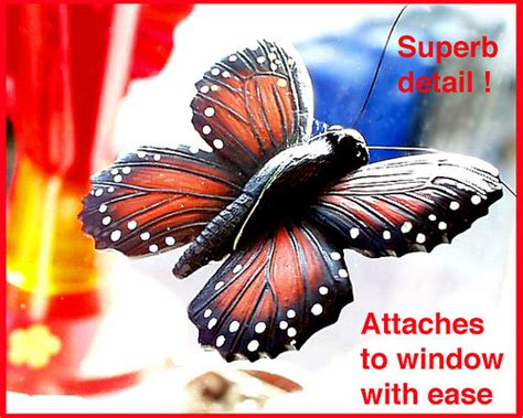 monarch butterfly fly  window magnet fly