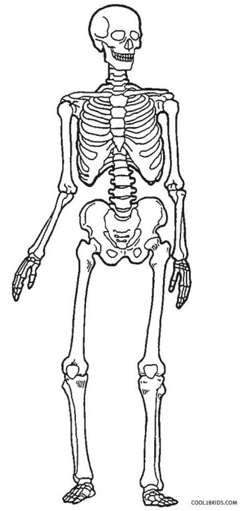 crayola coloring pages human skeleton human skeleton coloring page craftbrewswag info