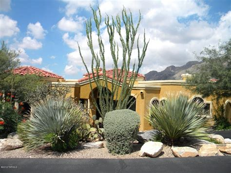Landscaping Ideas High Desert Fascinating Desert Landscaping Ideas For Front Yard 98