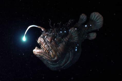 film barat monster ikan ikan monster penghuni laut dalam ini memiliki wujud yang