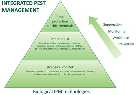 Design For Backyard Insect And Weed Control Mchs Science
