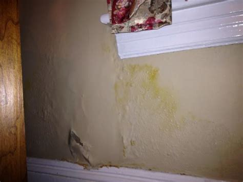 repair bathroom wall water damage plaster wall damage under window doityourself com
