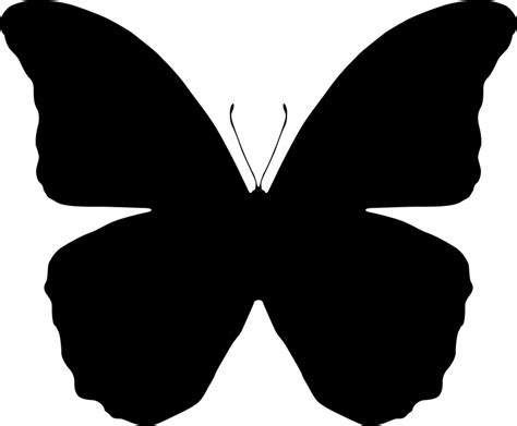 Ucan Hoddie butterfly silhouettes free vector