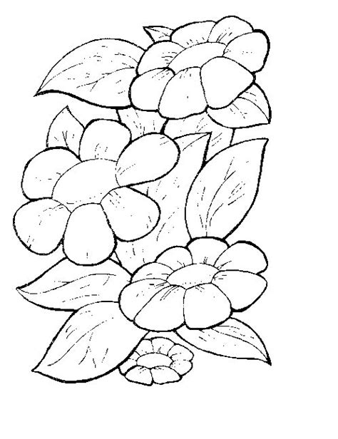 a flower s view coloring book for everyone books hawaiian flower coloring pages for adults coloring pages
