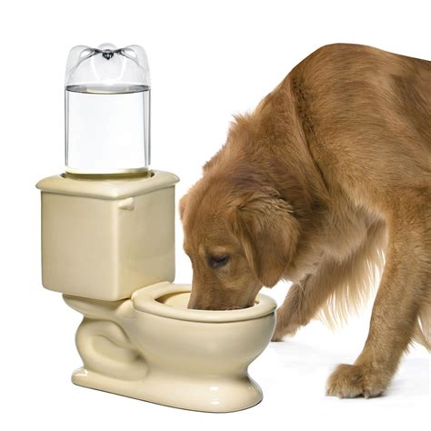 water for dogs different toilet water bowl for pets home designing