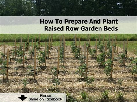 how to prepare a garden bed how to prepare and plant raised row garden beds