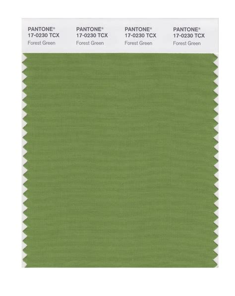forest green pantone buy pantone smart swatch 17 0230 forest green