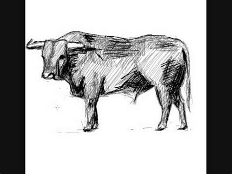 imagenes de toros para dibujar a lapiz como dibujar un toro how to draw a bull youtube