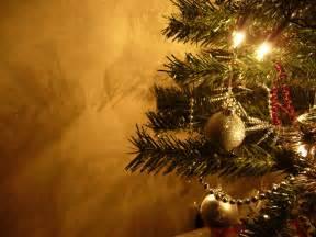 imagenes de navidad fondos de navidad pino fondos de pantalla de navidad
