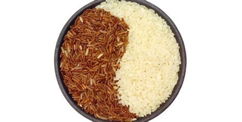 carbohydrates brown rice the difference between brown rice and white rice