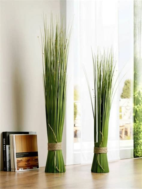 feng shui plants  harmony  positive energy