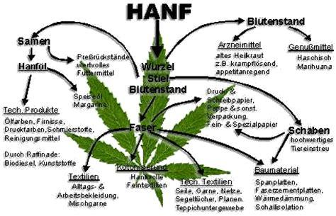 wann wird cannabis cannabis haschisch thc drogen information berlin