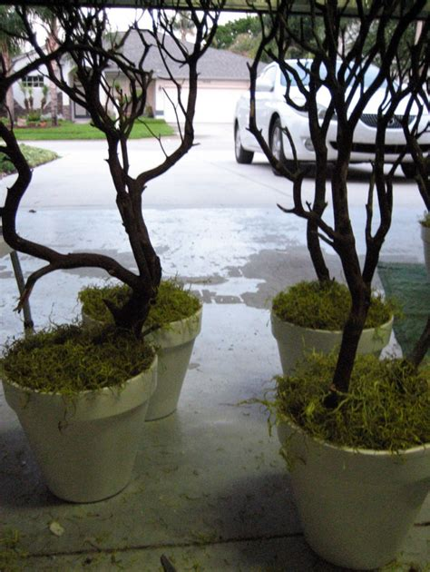 light up twig branches stand 17 best images about decorating with manzanita branches on