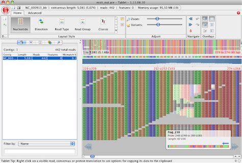 format file ace blasted bioinformatics sam bam with gapped reference