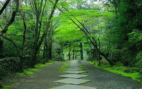 japanese garden kyoto a pondering mind
