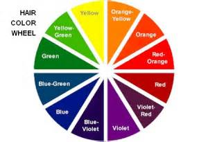 cosmetology color wheel from brass to ash toning my hair silver voice of
