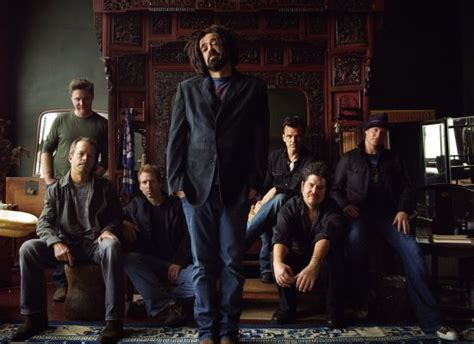 bands like counting crows counting crows artists wilful publicity