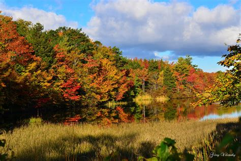 dartmouth colors photos the weather network