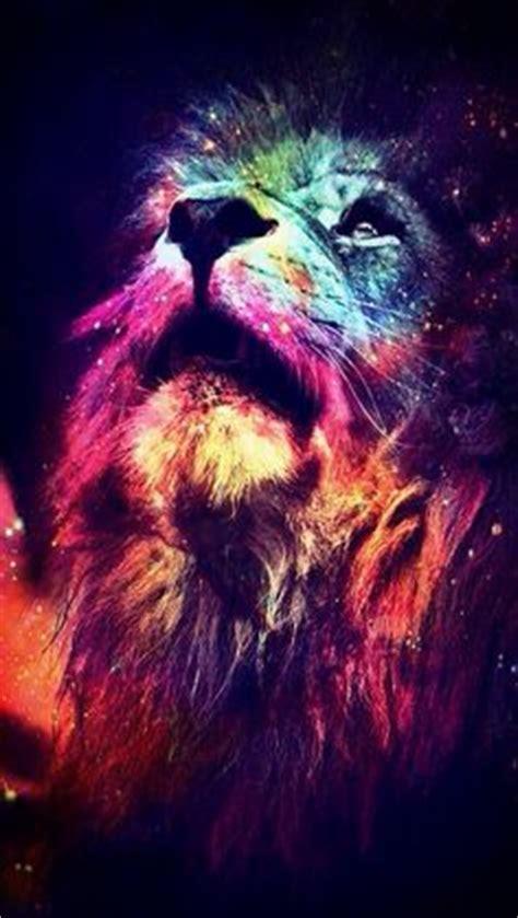 wallpaper colorful lion colorful lion lions pinterest lion