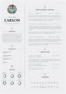 Curriculum Vitae Contents by 13 Slick And Highly Professional Cv Templates