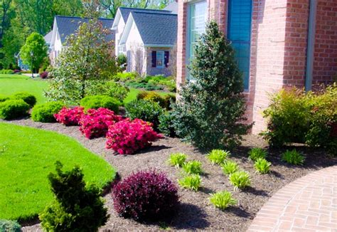 front yard landscaping plants modern house design ideas modern house design ideas