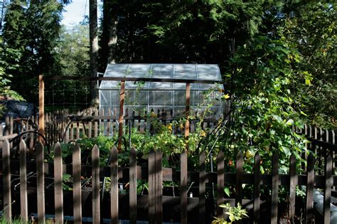 homestead vegetable gardening vegetable gardening archives modern homesteading
