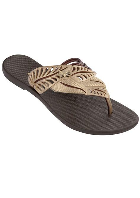Ipanema Sandal Wanita Tali Polos ipanema flip flop in brown