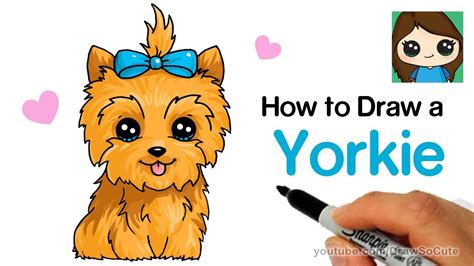 are yorkies easy to draw so vidmoon