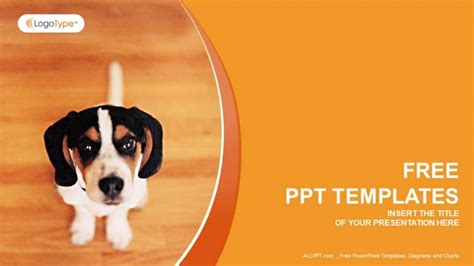 animal powerpoint template reboc info