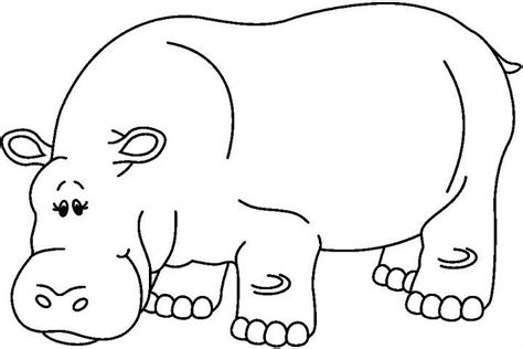 imagenes para colorear hipopotamo menta m 225 s chocolate recursos y actividades para