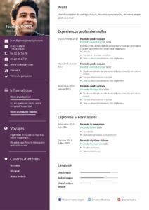 Les Type De Cv by Les Diff 233 Rents Types De Cv Selon Votre Profil Cv