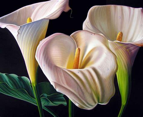 imagenes de flores hermosas grandes cuadros pinturas oleos cuadros al 243 leo de flores