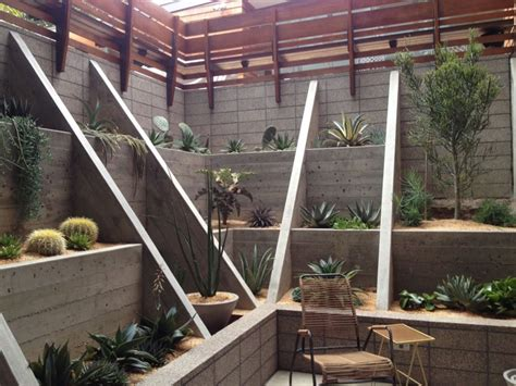 backyard cactus garden transform your yard into a garden oasis