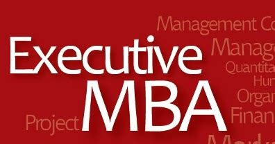 Amity Executive Mba by Executive Mba In India Through Distance Education