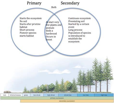 primary and secondary succession venn diagram my margaret hendrick gk12 glacier global change