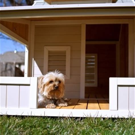 best dog houses ever 38 best images about doggie condo ideas on pinterest diy