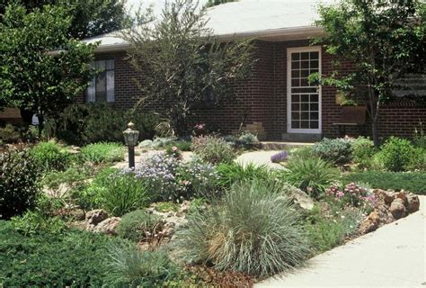 alternative layout for landscape front yard without grass home design and decor reviews