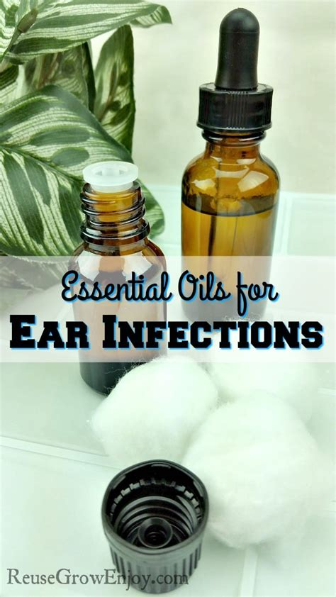 essential oils for ear infection top 10 essential oils for ear infections reuse grow enjoy