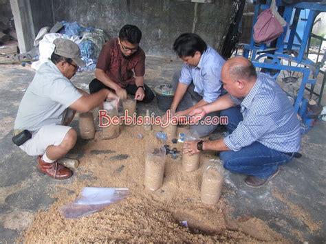 Bibit Jamur Tiram Sleman serunya pelatihan budidaya jamur angkatan 37 berbisnis jamur