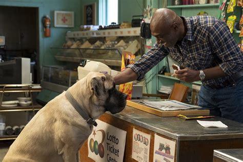 egy kutya negy utja  tvgo premier mozipremierekhu