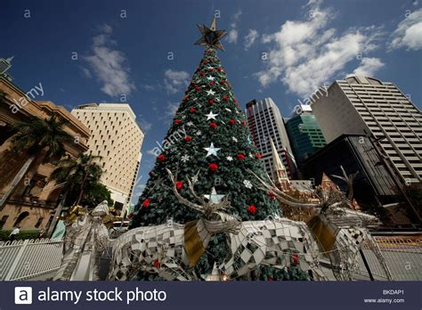 christmas tree on king george square in brisbane