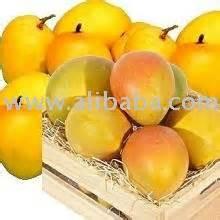 Sekar Yellow yellow mangoes products india yellow mangoes supplier